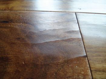 Engineered enigmas know these answers to avoid problems for Hardwood floors humidity