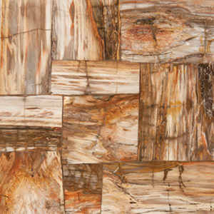 Tile Floor Manufacturer Features Petrified Wood Line - Wood Floor ...