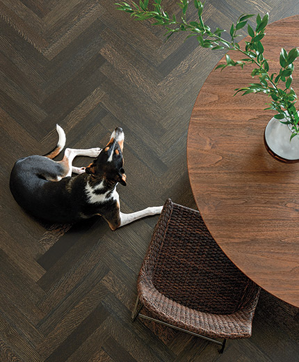 Sponsored New Wood Flooring Colors For A New Year Wood Floor